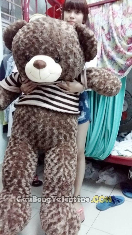 Gấu Bông Size 1m5