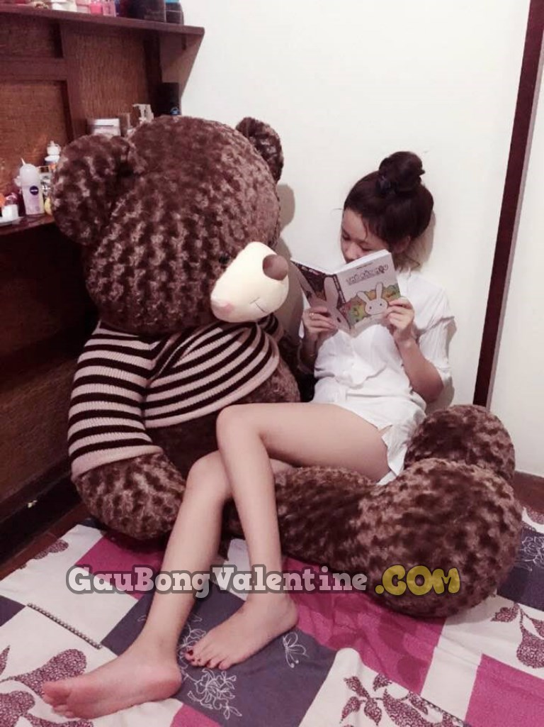 Gấu Bông