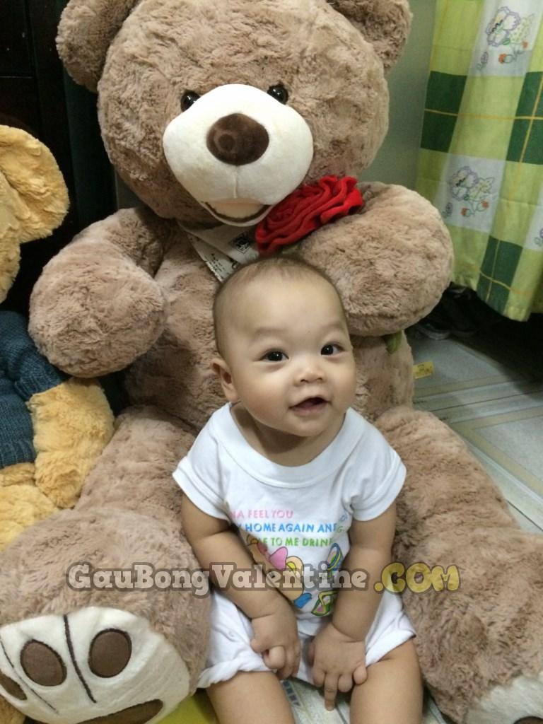 Gấu Bông Ôm Hoa