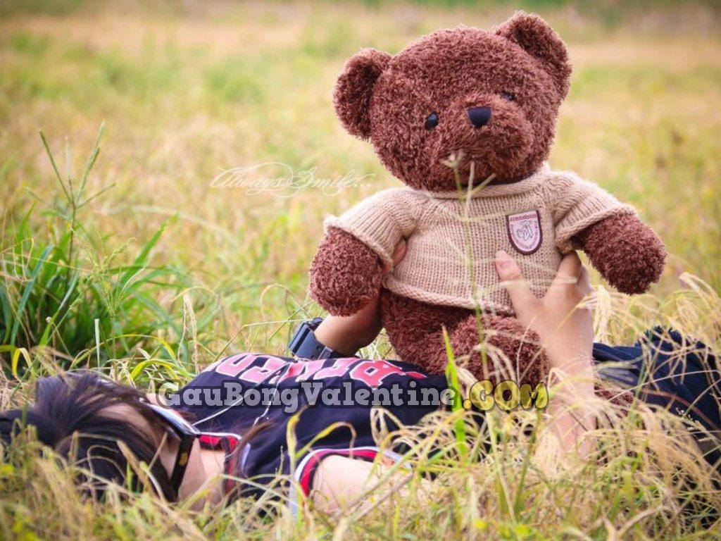 Gấu Bông Teddy Pub