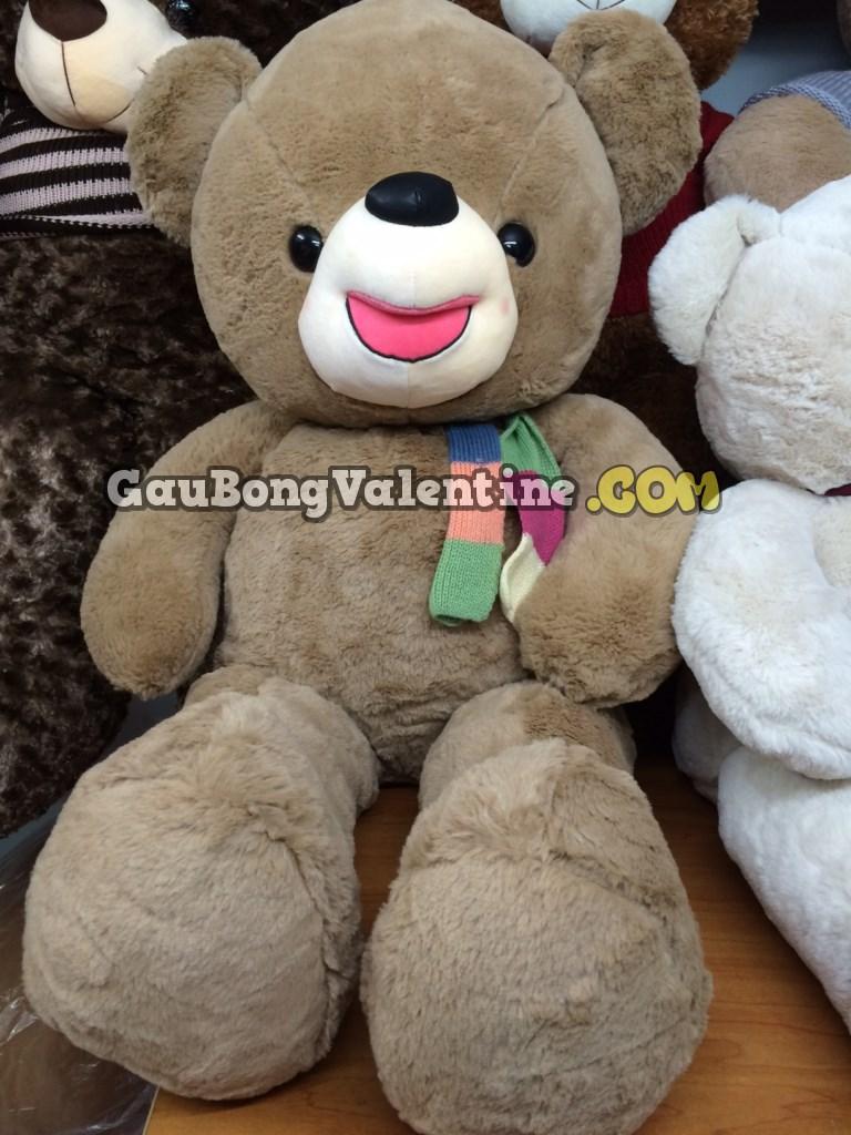 Gấu Bông Teddy Nơ Màu