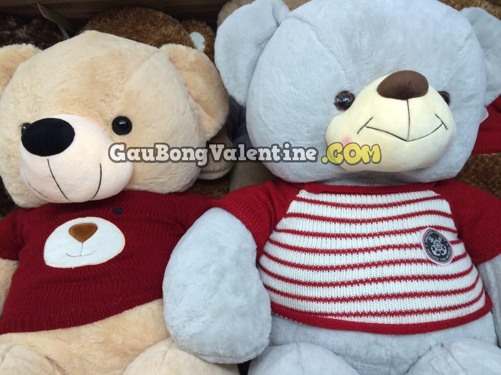 Gấu Bông Teddy Xám Navy
