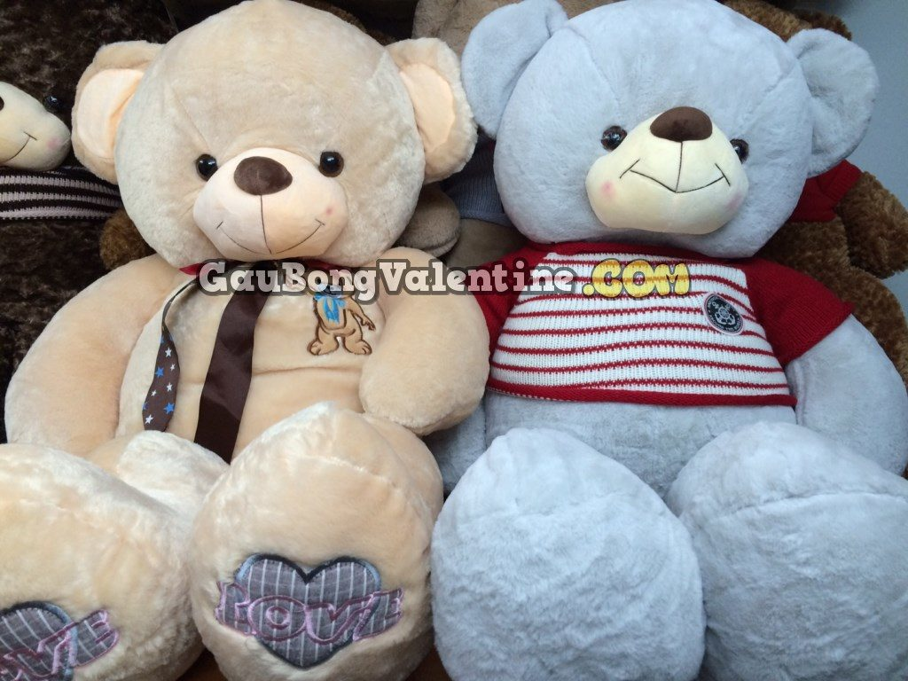 Gấu Bông Teddy Mây