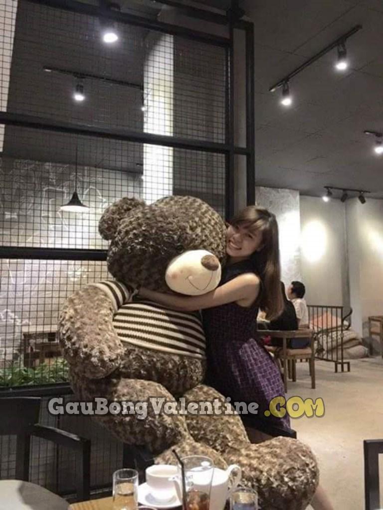 Gấu Bông Size lớn