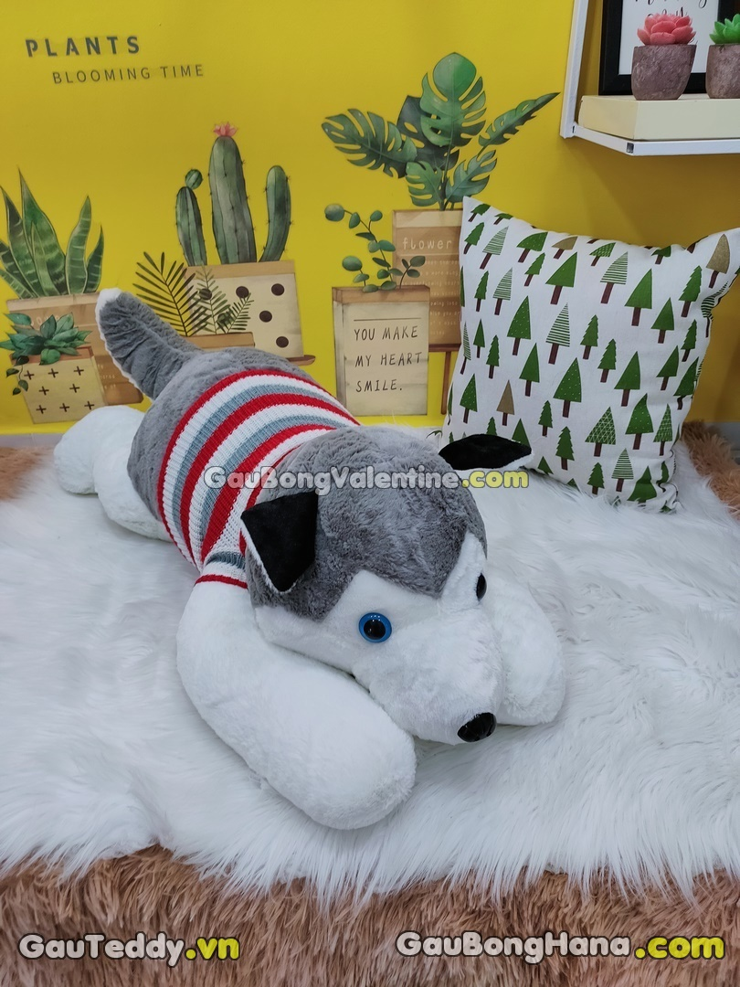 Chó Husky Áo Len