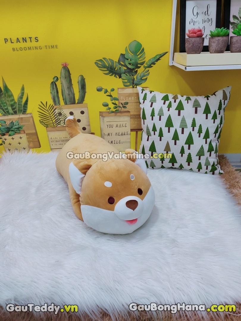 Chó Shiba Lè Lưỡi