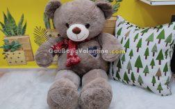 Gấu Bông Teddy Shawls Nâu