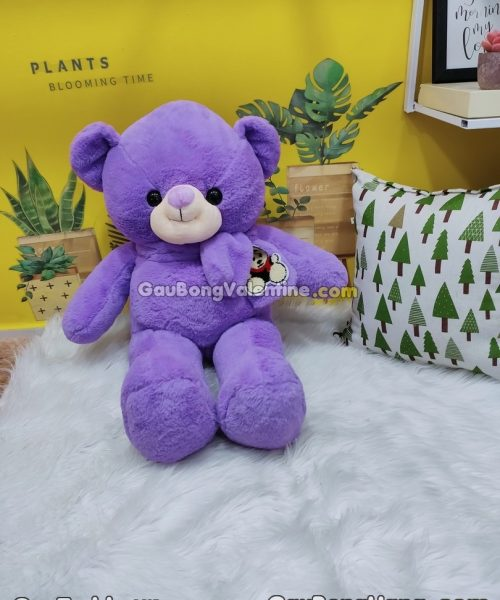 Gấu Bông Teddy Khăn Choàng Tím