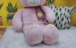 Gấu Bông Hồng Choàng Khăn