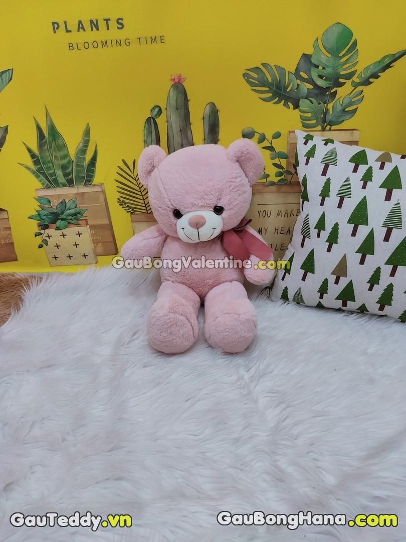 Gấu Bông Hồng Cột Nơ