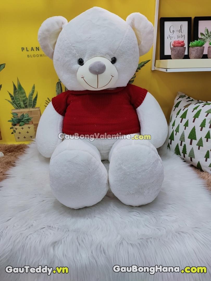 Gấu Bông Teddy Loving U Áo Đỏ
