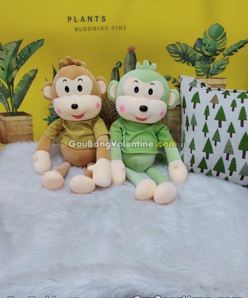 Khỉ Bông Aó Sọc