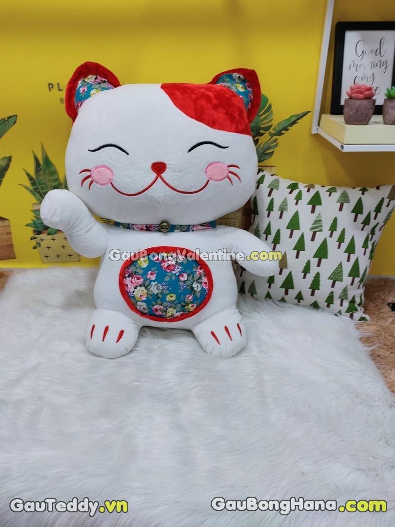 Mèo Bông Trắng Aó Hoa